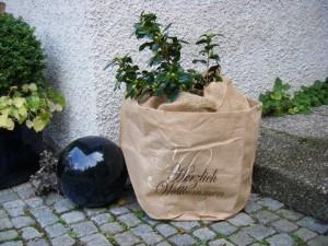 Dekorative Vliese: So kommen Ihre Pflanzen und Pflanzkübel gut durch den Winter