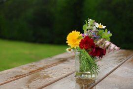 Frühjahr, Blumen