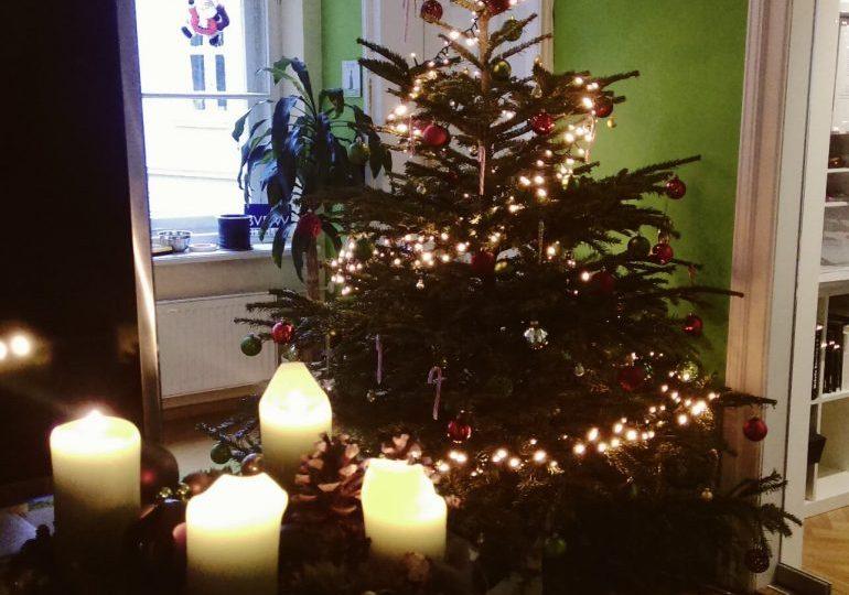 Weihnachten, Winter, Weihnachtsbaum