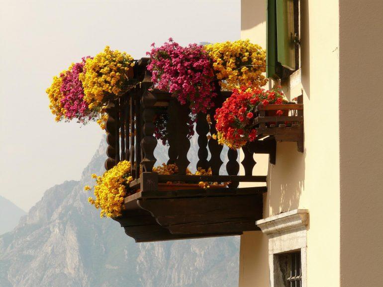 Sonniger Südbalkon mit Balkonpflanzen