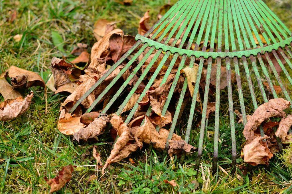 Gartenarbeit im Herbst: Laubrechen