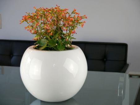 Pflanzkübel BALL, Hochglanz weiß Ø32x25 cm