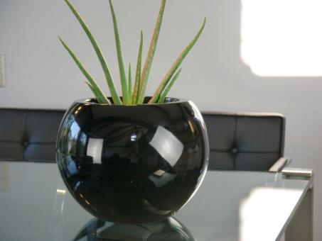 Pflanzkübel BALL aus Fiberglas in Hochglanz schwarz