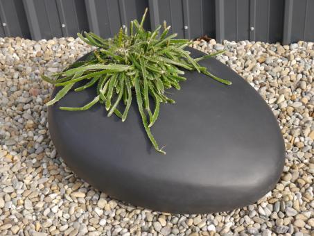 Pflanzstein PEBBLE mit Pflanzeinsatz, schwarz