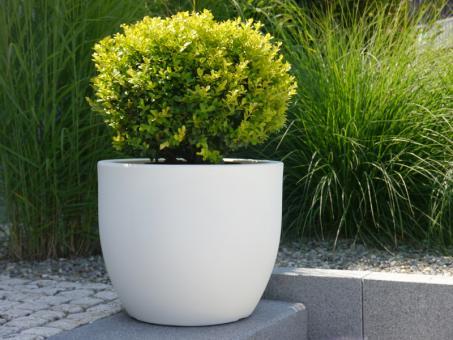 Pflanzkübel LUNA aus Kunststoff in weiß
