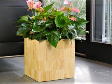 Blumenkübel PINDO aus Pinienholz natur - Massivholz handgefertigt