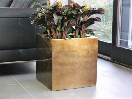 Pflanzkübel aus Fiberglas in Hochglanz bronze