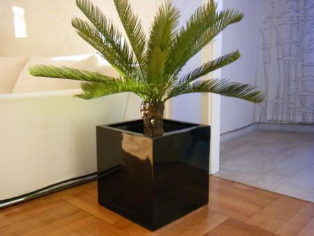 Pflanzkübel CUBO aus Fiberglas in Hochglanz schwarz