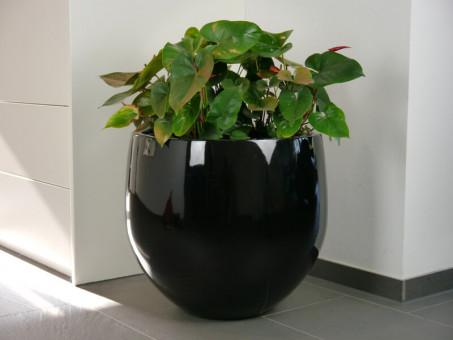 Pflanzkübel YOKO aus Fiberglas in Hochglanz schwarz