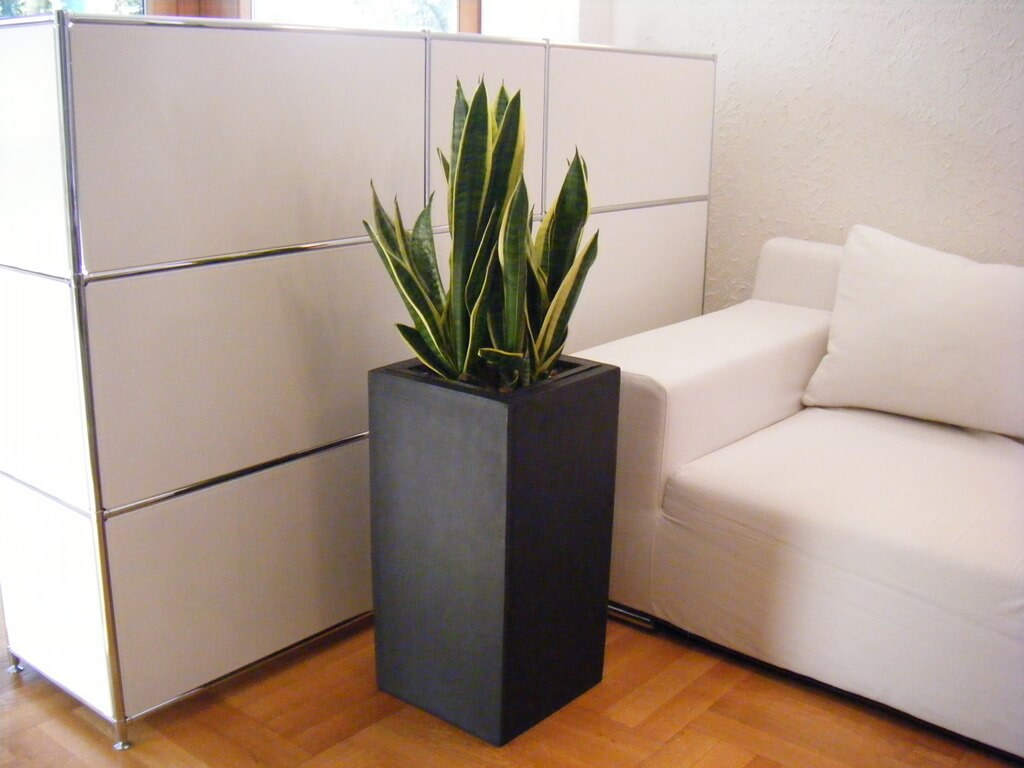 b ware pflanzgef e hoch fiberglas 38x38x70cm edel schwarz g nstig online von eastwest trading. Black Bedroom Furniture Sets. Home Design Ideas