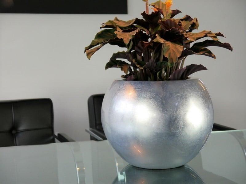 Hochglanz Pflanzkübel silber & bronze online kaufen | EAST WEST ...