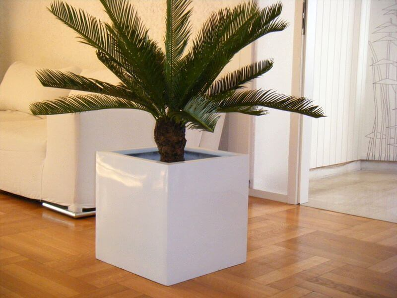 pflanzk bel cubo aus fiberglas in hochglanz wei bei. Black Bedroom Furniture Sets. Home Design Ideas